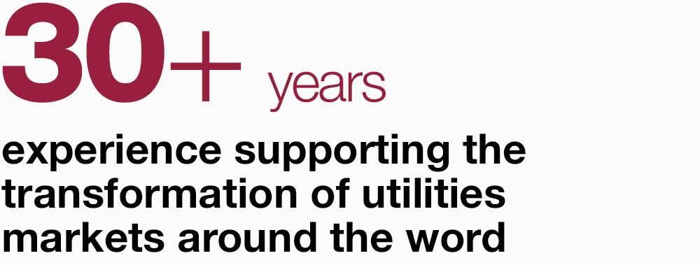 30+ years experience supporting the transformation of utilities markets around the word