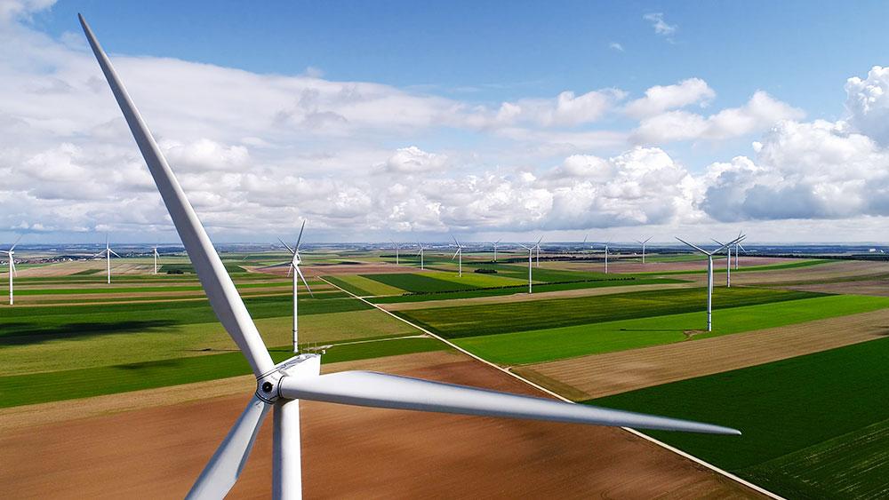 Generg: Streamlining operations to power growth