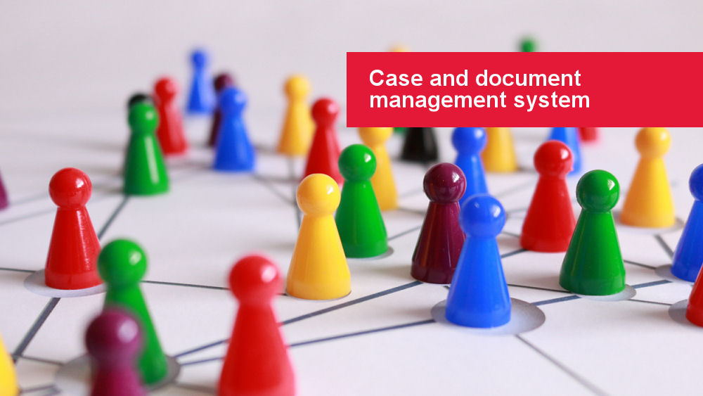 Case and document management system