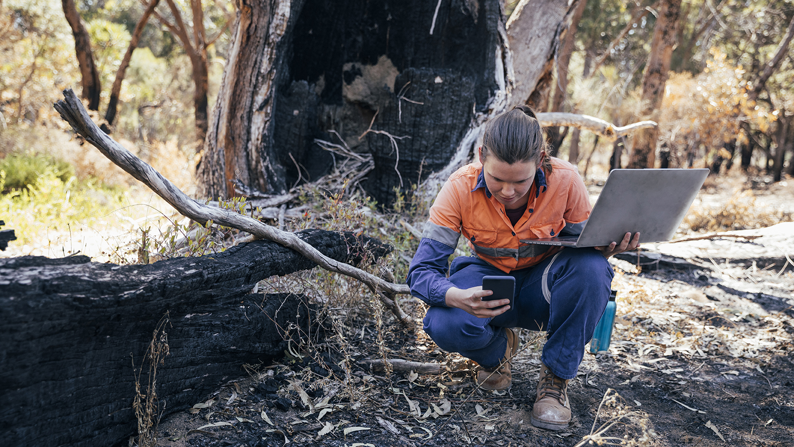 environmental scientist taking samples