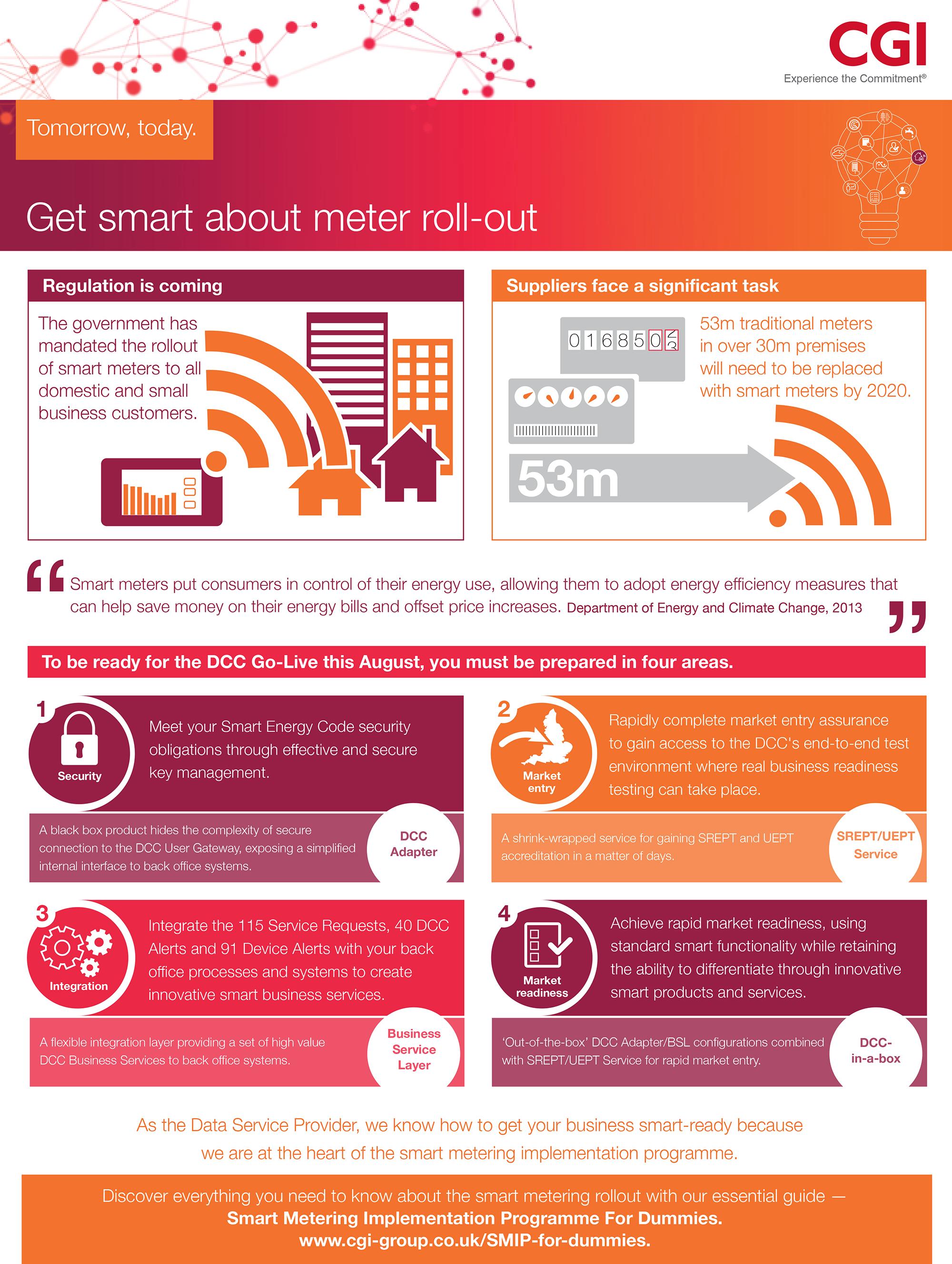 Smart Metering Infographic