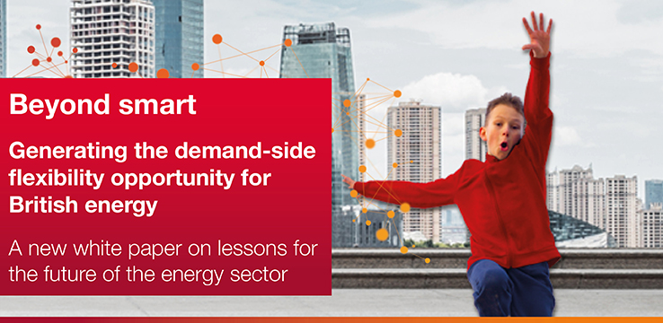 Generating the demand-side flexibility opportunity for British energy