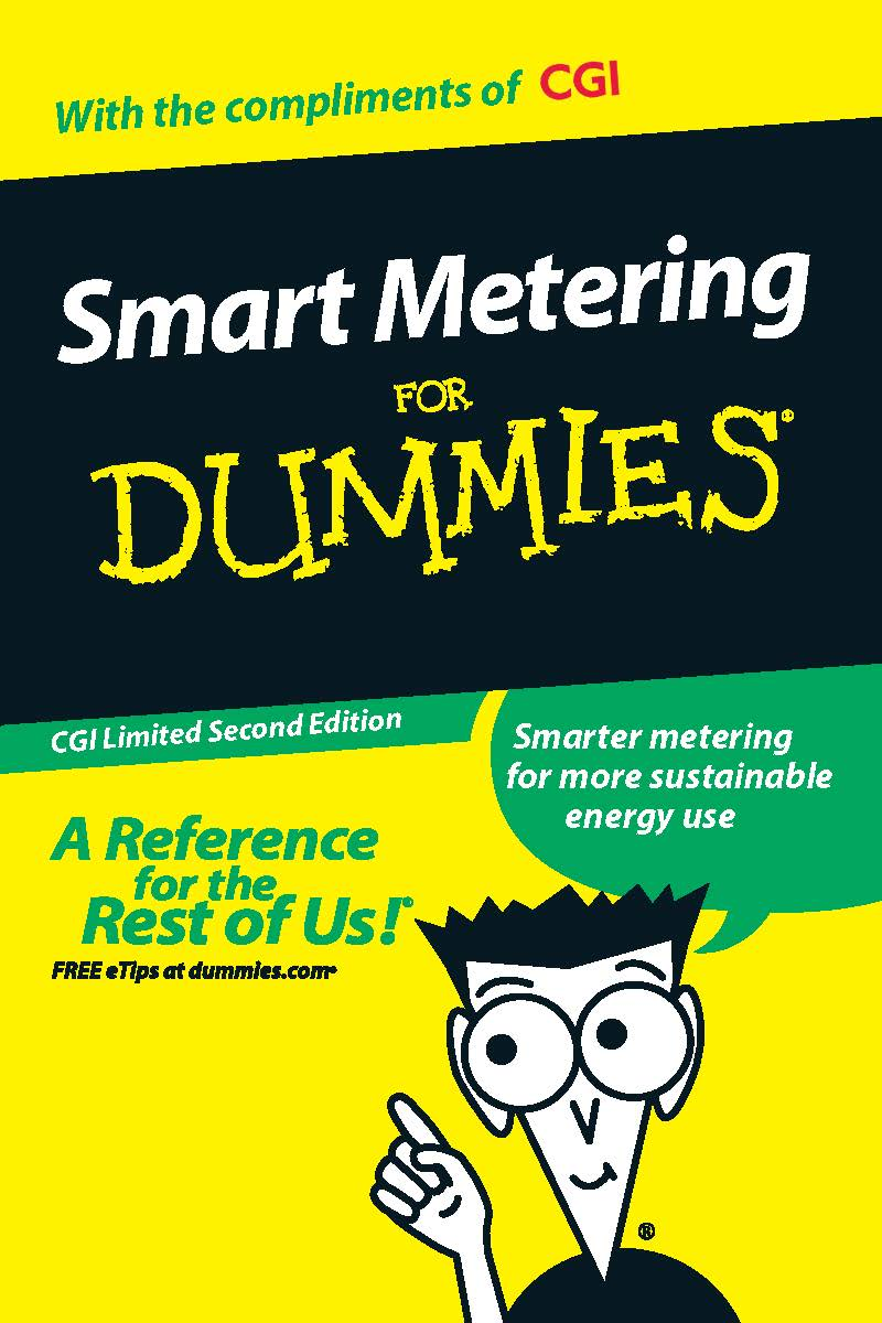 Smart Metering For Dummies Cgi Uk