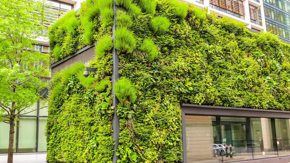 Kontorsbyggnad täckt i gröna växter i en stad