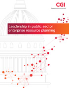 Leadership in Public Sector ERP