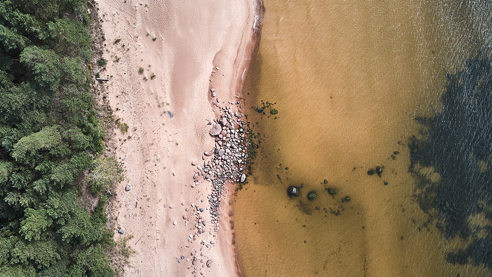 Aerial view of a river estuary showing beaches and surrounding ecosystem