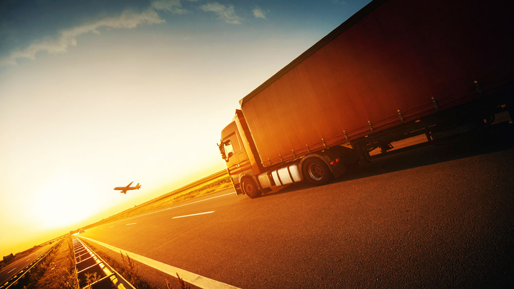 Advancing digitization and reducing costs to support a rebound in transportation