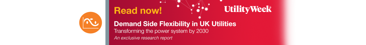 Demand Side Flexibility: Transforming the Power System by 2030