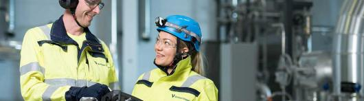 Utility professionals - Achieving lower-emission energy production development in Finland with ...