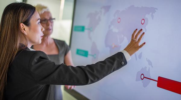 consultant pointing to global delivery map