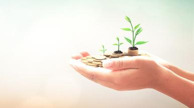 Hands holding coins with green shoots growing from them