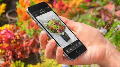 Interflora Mobile Commerce and Native App