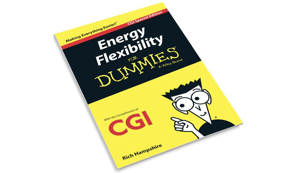 Front cover of the CGI Energy Flexibility for Dummies