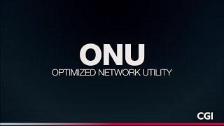 The Optimized Network Utility – transitioning to a new energy system