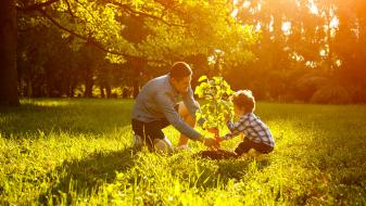 Adult and child planting a tree on a sunny day