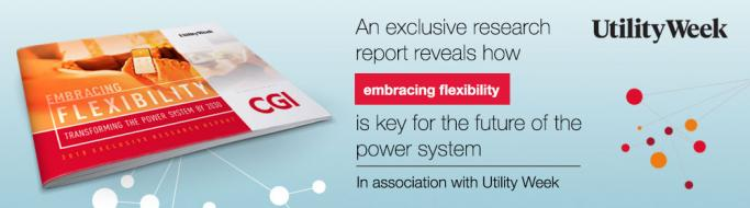 Embracing Flexibility: Transforming the Power System by 2030'